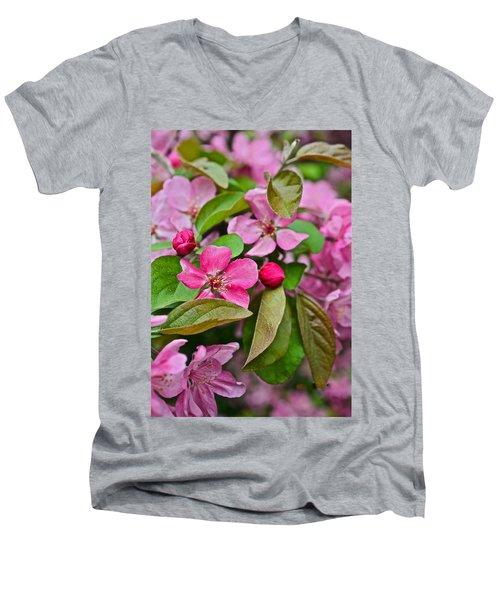 2015 Spring At The Gardens Pink Crabapple Blossoms 2 Men's V-Neck T-Shirt
