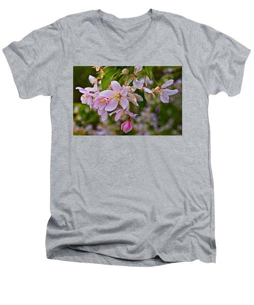 2015 Spring At The Gardens White Crabapple Blossoms 1 Men's V-Neck T-Shirt