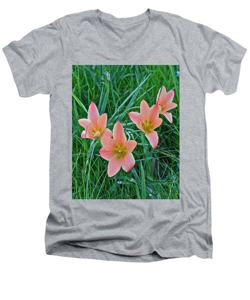 2015 Spring At The Gardens Meadow Garden Tulips 3 Men's V-Neck T-Shirt