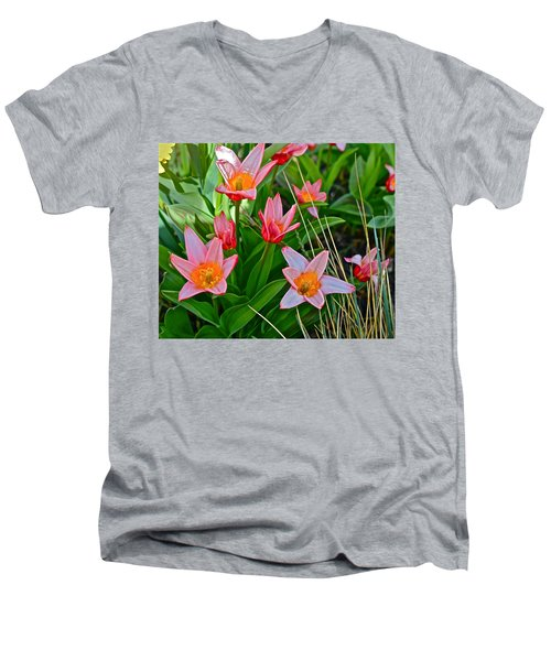 2016 Acewood Tulips 2 Men's V-Neck T-Shirt