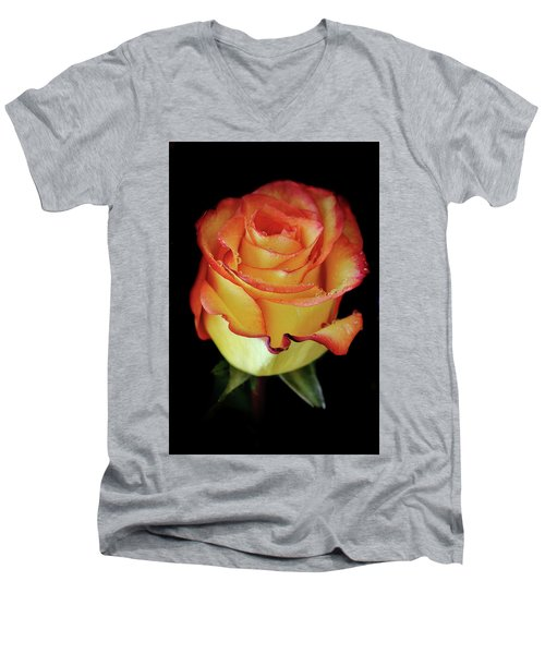 23rd Anniversary Rose Men's V-Neck T-Shirt