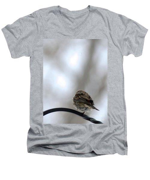 25 Degrees Men's V-Neck T-Shirt
