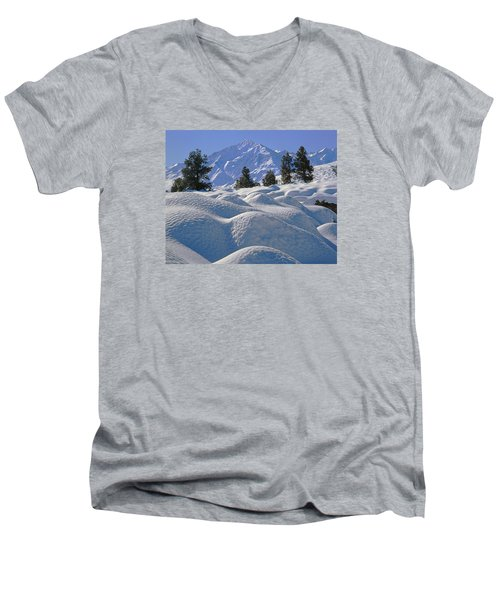 2m6402 Mt. Tom From Sherwin Grade Men's V-Neck T-Shirt