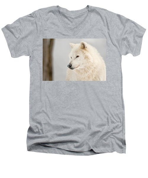Arctic Wolf Portrait Men's V-Neck T-Shirt
