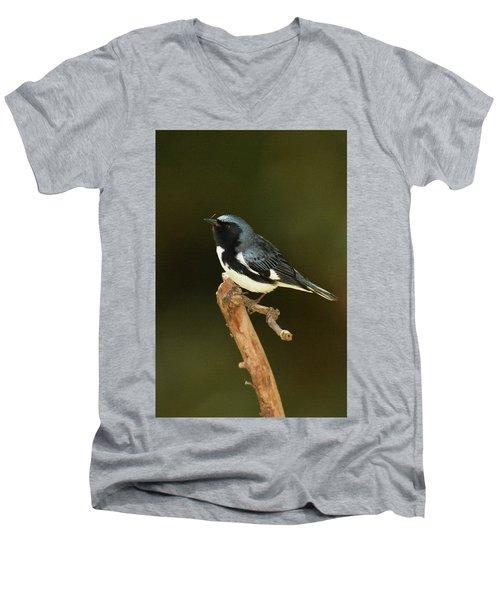 Black-throated Blue Warbler Men's V-Neck T-Shirt by Alan Lenk