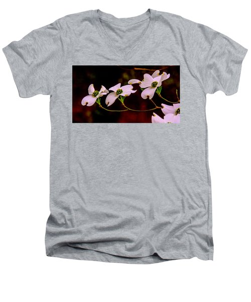 3 Dogwood Blooms On A Branch Men's V-Neck T-Shirt by John Harding