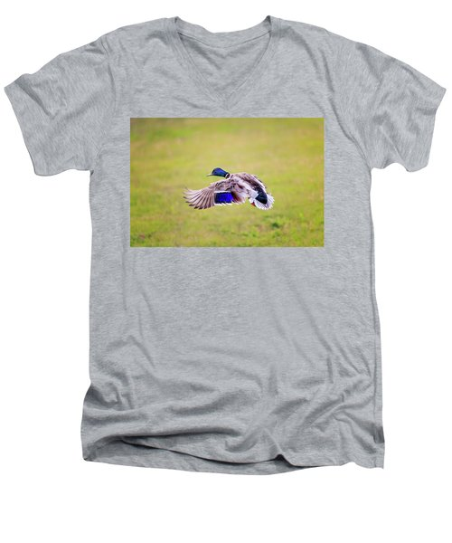 Duck-drake Men's V-Neck T-Shirt