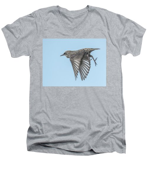 European Starling Men's V-Neck T-Shirt by Tam Ryan