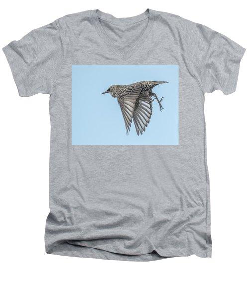 European Starling Men's V-Neck T-Shirt