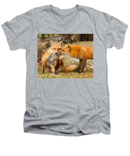 Foxes In Love Men's V-Neck T-Shirt