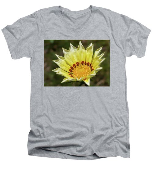 Gazania Petals Men's V-Neck T-Shirt