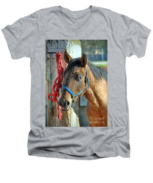 Horse Men's V-Neck T-Shirt by Savannah Gibbs