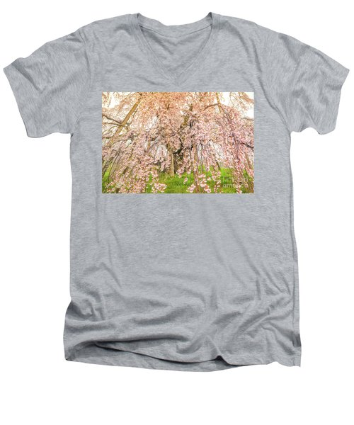 Men's V-Neck T-Shirt featuring the photograph Miharu Takizakura Weeping Cherry04 by Tatsuya Atarashi