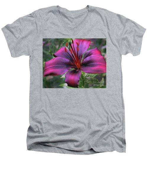 Nice Lily Men's V-Neck T-Shirt