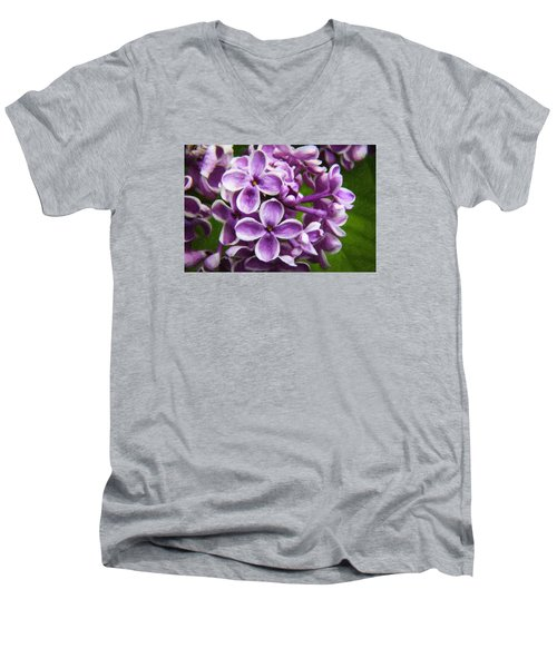 Pink Flowers Men's V-Neck T-Shirt by Andre Faubert