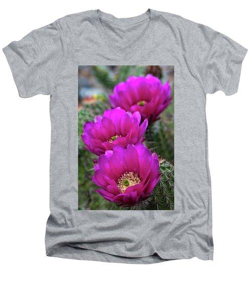Men's V-Neck T-Shirt featuring the photograph Pink Hedgehog Cactus  by Saija Lehtonen