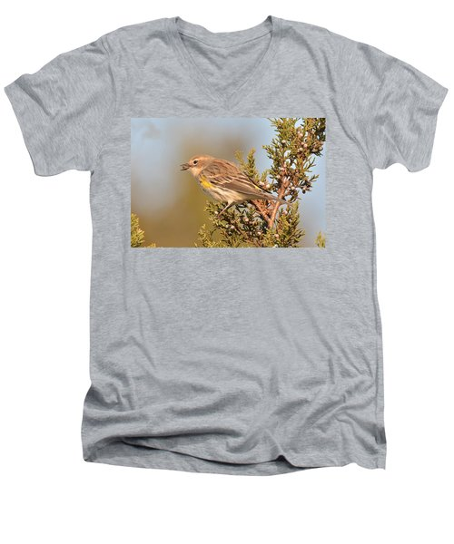 Yellow-rumped Warbler Men's V-Neck T-Shirt by Alan Lenk