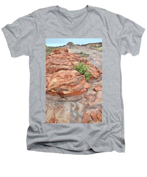 Colorful Sandstone In Valley Of Fire Men's V-Neck T-Shirt