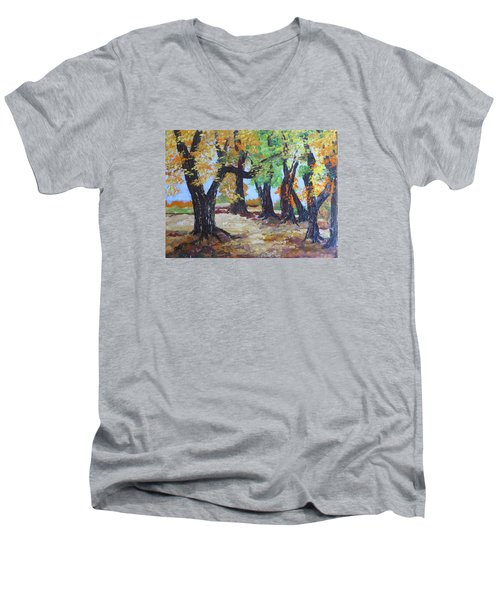 #35 Cottonwood Colors Men's V-Neck T-Shirt