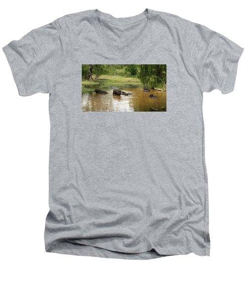 Buffalos Men's V-Neck T-Shirt by Christian Zesewitz
