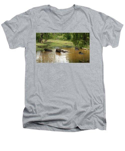 Buffalos Men's V-Neck T-Shirt