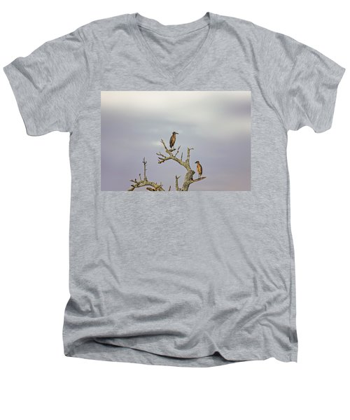 Green Heron Men's V-Neck T-Shirt by Peter Lakomy