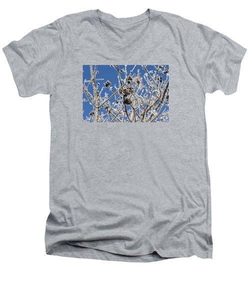 Hoar Frost Men's V-Neck T-Shirt