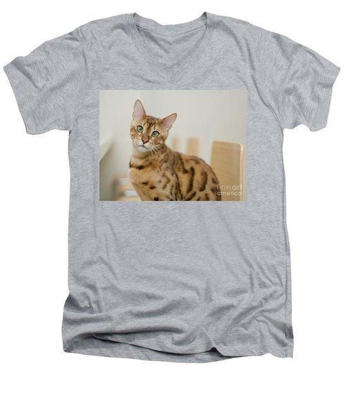 4 Men's V-Neck T-Shirt