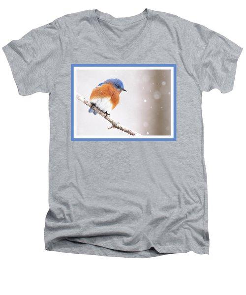 Snowy Bluebird Men's V-Neck T-Shirt