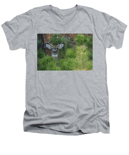 White Tailed Deer Calverton New York Men's V-Neck T-Shirt