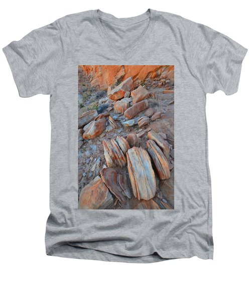 Men's V-Neck T-Shirt featuring the photograph Colorful Cove In Valley Of Fire by Ray Mathis