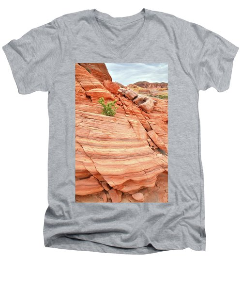 Men's V-Neck T-Shirt featuring the photograph Colorful Wash In Valley Of Fire by Ray Mathis
