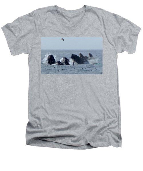 5 Humpbacks Lunge Feeding  Men's V-Neck T-Shirt