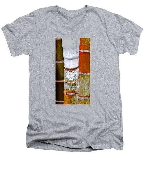 Bamboo Palm Men's V-Neck T-Shirt