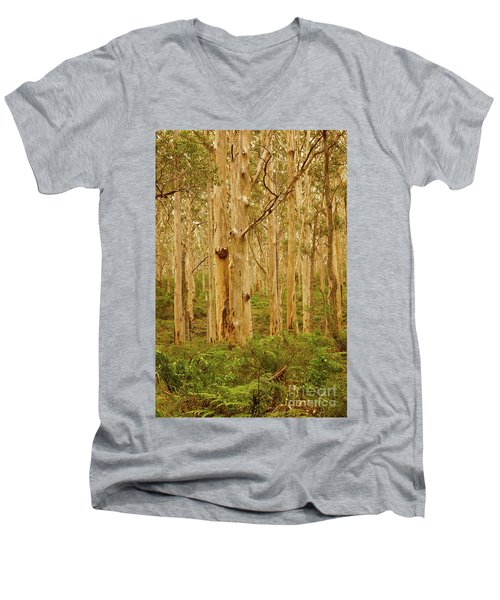 Boranup Forest II Men's V-Neck T-Shirt