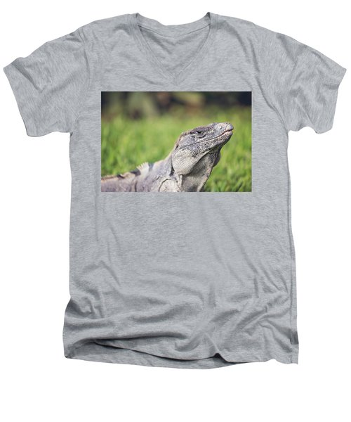 Iguana Men's V-Neck T-Shirt