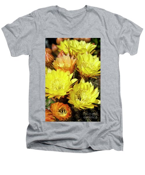 Yellow Cactus Flowers Men's V-Neck T-Shirt by Jim And Emily Bush
