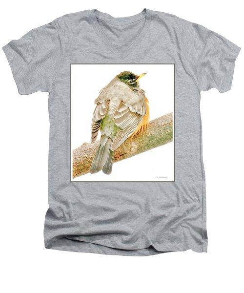 American Robin Male, Animal Portrait Men's V-Neck T-Shirt
