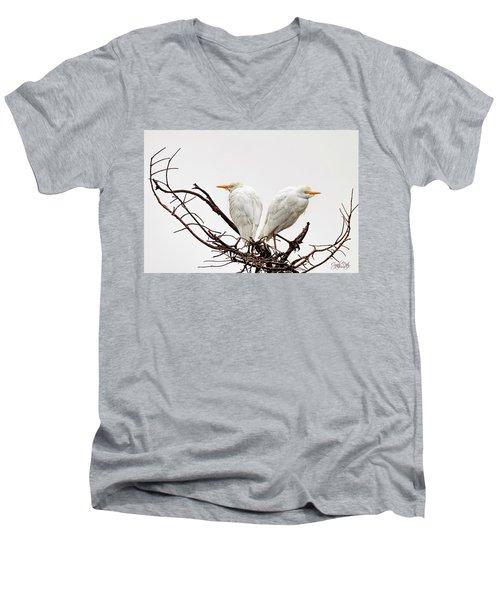 A Basket Of Anger Men's V-Neck T-Shirt by Cyndy Doty
