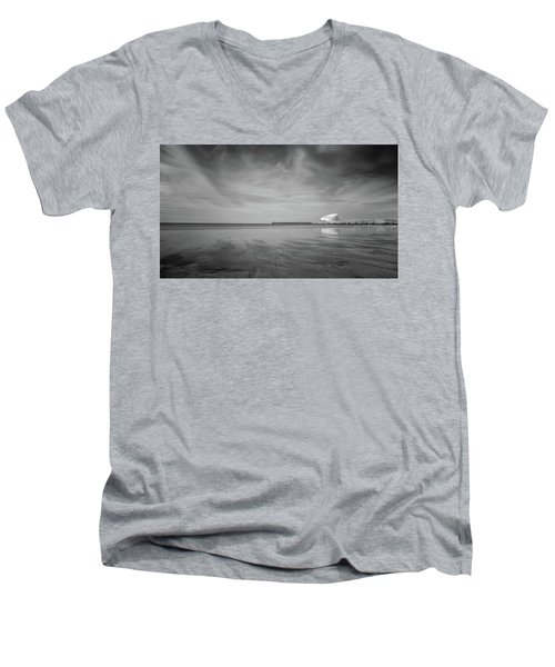 A Beach And A Bunch Of Birds Men's V-Neck T-Shirt