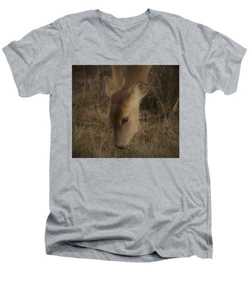 A Beautiful Face Men's V-Neck T-Shirt