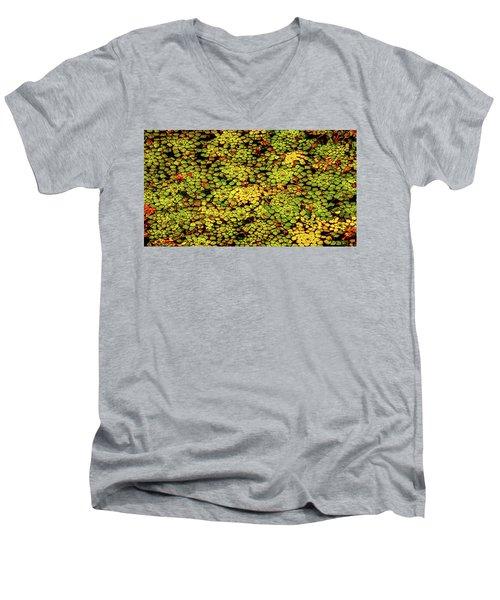 A Botanical Mosaic Men's V-Neck T-Shirt