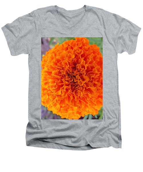 A Burst Of Orange Men's V-Neck T-Shirt