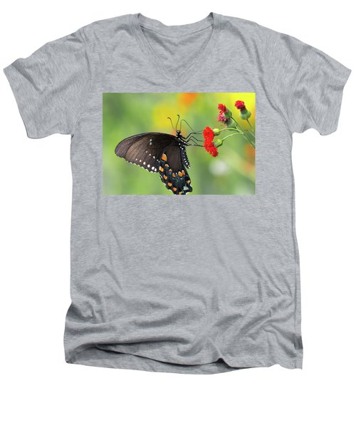 A Butterfly  Men's V-Neck T-Shirt