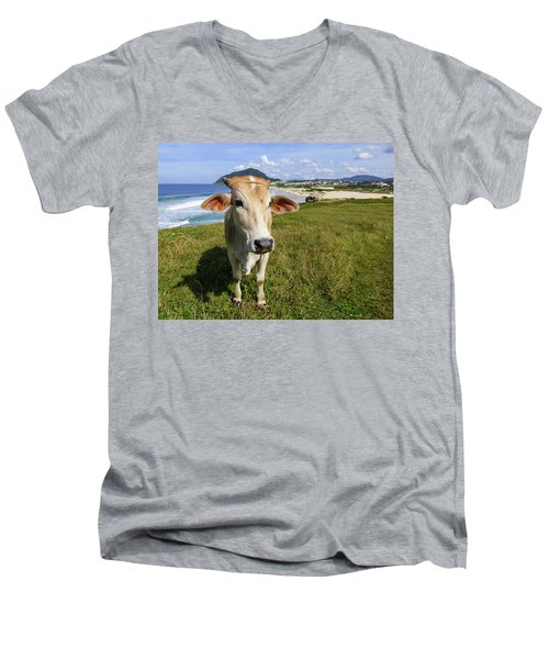 A Cow At The Beach Men's V-Neck T-Shirt