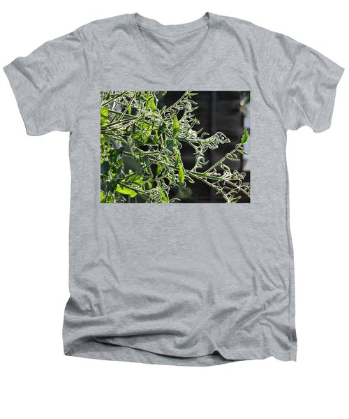 a day with the Veterans at Mary Lu's Men's V-Neck T-Shirt