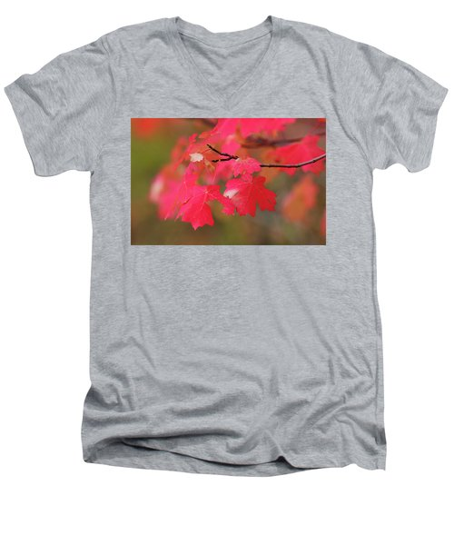 A Flash Of Autumn Men's V-Neck T-Shirt