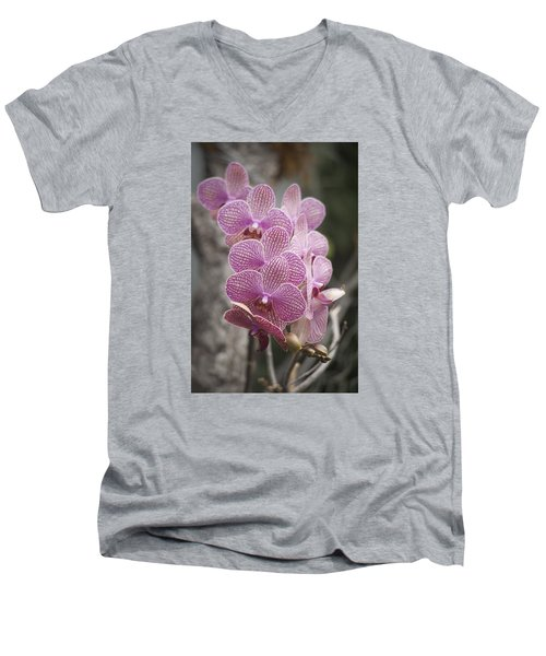 A Flight Of Orchids Men's V-Neck T-Shirt