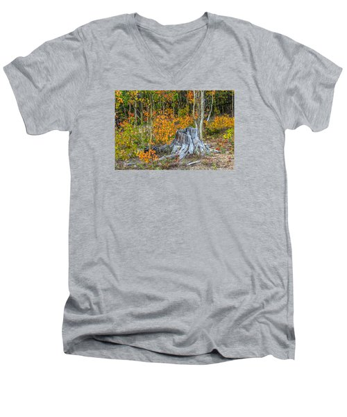 Men's V-Neck T-Shirt featuring the photograph A Forest Of Color by Stephen  Johnson