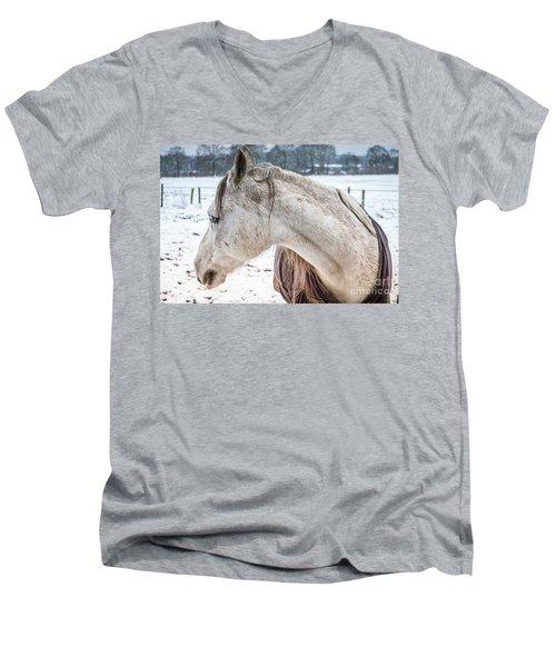 A Girlfriend Of The Horse Amigo Men's V-Neck T-Shirt